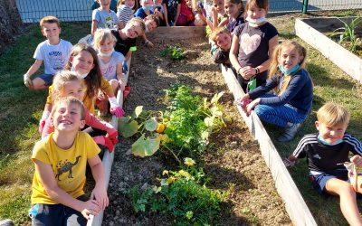 Visite du jardin de l'école